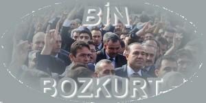 bin_boz