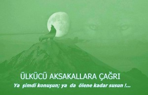 aksakal1